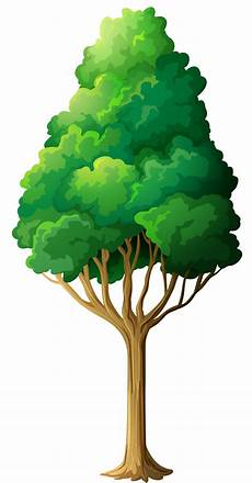 Clipart Transparent Background Png Tree