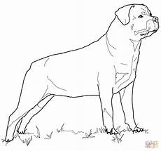 rottweiler coloring with images coloring