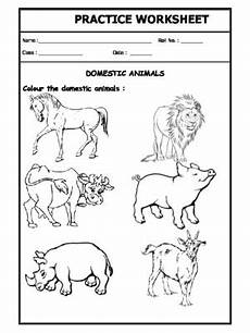 worksheets on domestic animals for grade 1 14267 a2zworksheets worksheets of domestic animals animals science