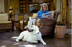 pet friendly hotel portola hotel spa at monterey bay in monterey ca pets can stay inc