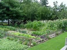 garden housecalls grow vegetables in the shade it s