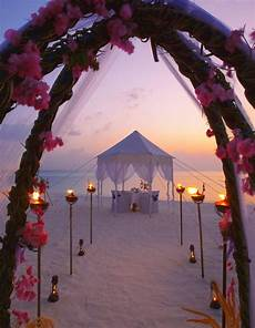 216 best beach wedding ceremony ideas images on pinterest beach weddings beach ceremony and