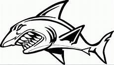 30 Gambar Kartun Hitam Putih Ikan Gambar Kartun