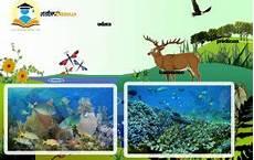 Ekosistem Adalah Pengertian Macam Komponen Gambar