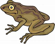 Frog And Toad Clipart