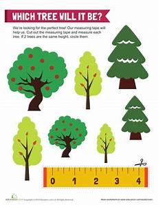 plants measurement worksheets 13586 tree measurements measurement worksheets tree study math measurement