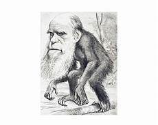 take a trip with charles darwin log sheet lagoa hosts lecture charles darwin portugal resident