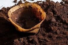 Kaffeepulver Als Dünger - kaffee als d 252 nger kaffeesatz als nat 252 rlicher helfer in