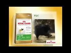Royal Canin Pug 25 - royal canin pug 25