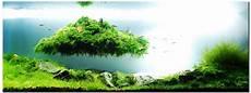 amano aquascape the of aquascaping joe blogs