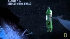 deepsea challenge way down mariana trench youtube