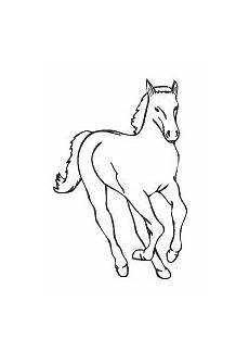 ausmalbilder pferde und ponys stute fohlen und esel