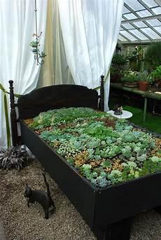 ein blumenbeet im blumen bett bed of plants garten