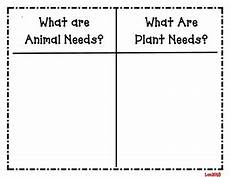 basic needs of living things sort plants and animals tpt