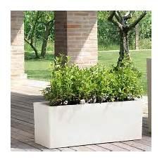 vasi resina prezzi vasi da giardino ed interno vendita bestprato