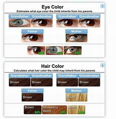 Hair Color Genetics Calculator