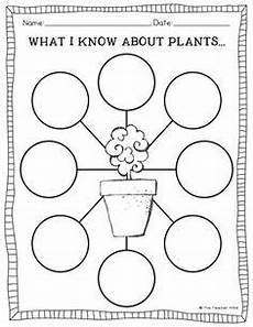 plants and soil worksheets 13633 5 best images of soil texture worksheet soil texture triangle worksheet soil classification