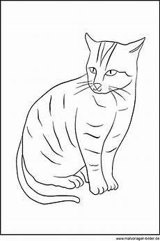 Ausmalbilder Katze Schwer Katzen Zeichnung Zum Ausdrucken