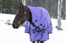winter coats for horseback what affects a s winter coat growth