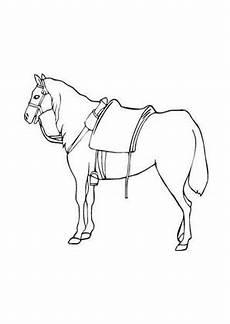 Malvorlage Pferd Mit Sattel Ausmalbilder Pferd Mit Sattel Pferde Malvorlagen