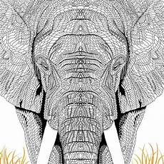 Ausmalbilder Erwachsene Elefant Pin By On Coloring Book Elephant Coloring