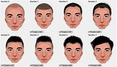 haircut numbers guide to hair clipper sizes hairdressing terminology atoz hairstyles