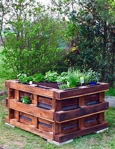 hochbeet bepflanzen kräuter hochbeet bauen aus paletten hochbeet fur balkon