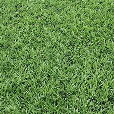 bulk buy grass scrapbooking paper