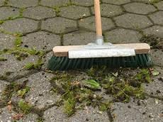 moos entfernen auf terrasse und gehweg 5 tipps