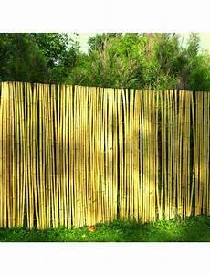 Parevue Jardin Cloture Bambou Bambouland Sauvage R 233 Guliere