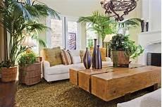 plantes feng shui salon bricolage maison et d 233 coration
