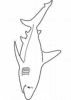 ausmalbilder haifisch 22 ausmalbilder tiere