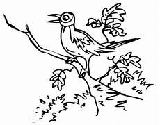 kostenlose malvorlage v 246 gel vogel zwitschert auf einem