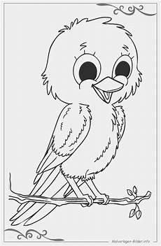 Bilder Zum Ausmalen Ausdrucken Vogel Zum Ausmalen Carsmalvorlage Store