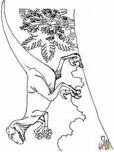 Ausmalbilder Dinosaurier Fleischfresser Deinonychus Carnivorous Dromaeosaurid Dinosaurs Coloring