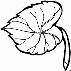 Gratis Malvorlagen Blatt Blatt Mit Adern Ausmalbild Malvorlage Blumen