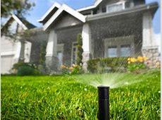 Choosing an Irrigation System   HGTV