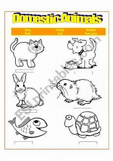 domestic animal worksheets 14291 domestic animals esl worksheet by brenes cyn