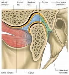 Terapi Efektif Pada Pasien Temporo Mandibular Junction