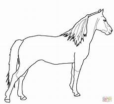 Ausmalbilder Pferde Supercoloring Ausmalbild Pferd Ausmalbilder Kostenlos Zum