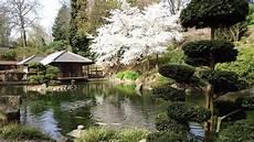 Japanischer Garten Bilder - japanischer garten kaiserslautern 29 03 2014