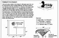 mallard duck house plans custom project nest box woodworking plans