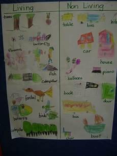living and using a t chart kindergarten science kindergarten