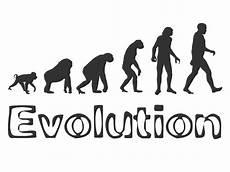 die evolution des menschen wandtattoo evolution wandtattoos de