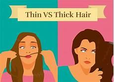 Thick Vs Thin Hair