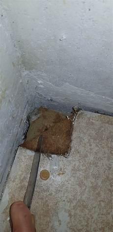 Ist Das Asbest Unter Dem Pvc Boden Pvc Boden