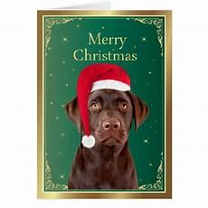 labrador retriever dog merry christmas card zazzle