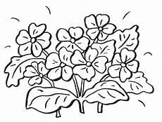 Blumen Malvorlage Kinder Blumen Malvorlage Blumen Ausmalbilder Ausmalen