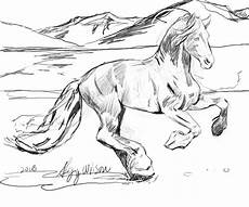 realistic horse drawing at getdrawings com free for