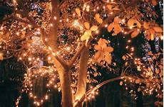 a light bright and beautiful amazing awesome beautiful bright lights